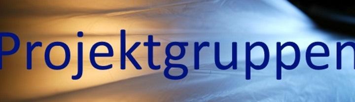 Banner Projektgruppen breiter