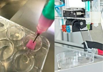 3D-Bioprintverfahren zum Drucken von künstlichen Geweben und Organen Dr. Koltay IMTEK Collage