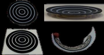 4D-Druck Demonstratoren mit Materialkombinationen Prof. Speck Biologie